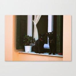 Island Cats Canvas Print