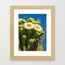 Saguaro Flower Power Framed Art Print