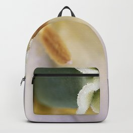 Inside a White Tulip Backpack