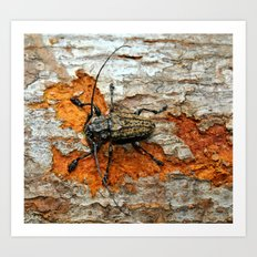 One Tough Bug Art Print