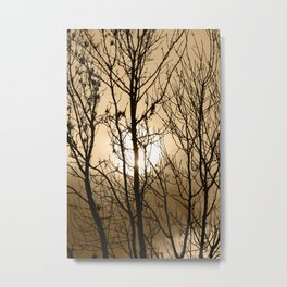 Winter's Bone Donegal Tint Metal Print