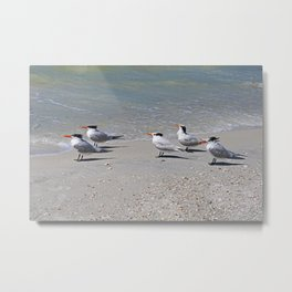 Any Way the Wind Blows Metal Print