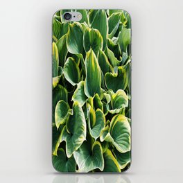 Leafy Green with Envy iPhone Skin
