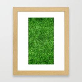 Green Grass Background Framed Art Print