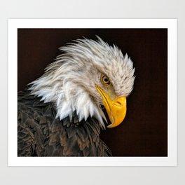 Bald Eagle | Painting | Wildlife | USA Art Print
