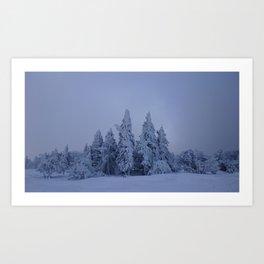 pines & snow Art Print