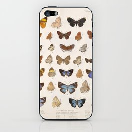 Vintage Scientific Insect Butterfly Moth Biological Hand Drawn Species Art Illustration iPhone Skin