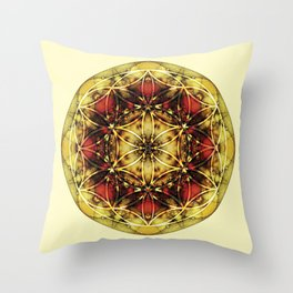 Sacred Geometry Mandalas 4 Throw Pillow
