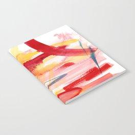 PHX Notebook