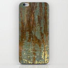 Painted wood iPhone Skin