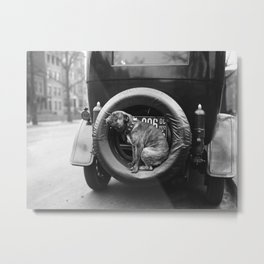 Can You Spare A Dog? Metal Print