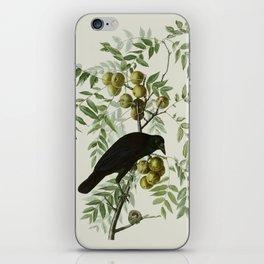 Vintage Crow Illustration iPhone Skin