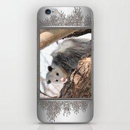 North American Opossum in Winter iPhone Skin