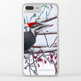 April Pileated Clear iPhone Case