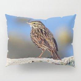 Male Savannah Sparrow Pillow Sham
