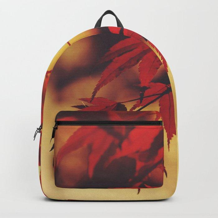 Indian Summer 3 Backpack