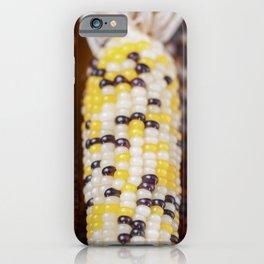 Indian Corn 4 iPhone Case