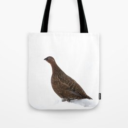 red grouse walking Tote Bag