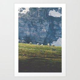 Beartooth Mountain Goats Art Print