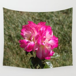 Beautiful Rainbow Sherbet Rose, Single Rose, Pink Flower Wall Tapestry
