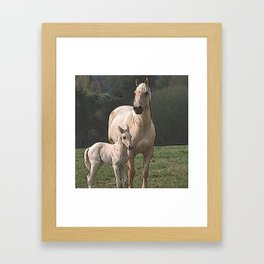 CArt Horse with foal Framed Art Print