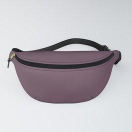 Deep Eggplant Purple Color Fanny Pack