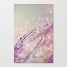 Vintage Feather Drops Canvas Print