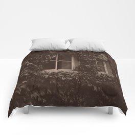 Secret Window Comforters