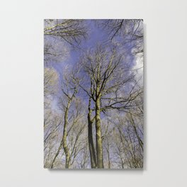 NATURE SINCE 1995 Metal Print