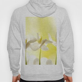 Three Ballerinas #decor #society6 #buyart Hoody