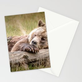Big Beautiful Grizzly Bear Relaxing In Green Meadow Close Up Ultra HD Stationery Cards