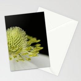 SnowDrop Macro Stationery Cards