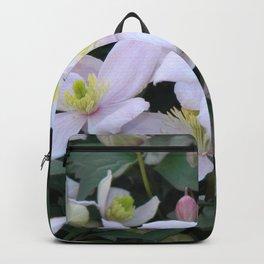 Clemantis Montana I3 Backpack