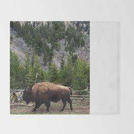 Bison Roaming Throw Blanket