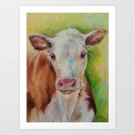 CALF Cute farm animal portrait oil painting Art Print