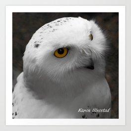 Snow Owl Portrait Art Print