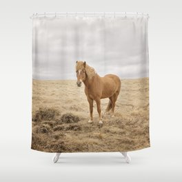 Solitary Horse In Color Shower Curtain