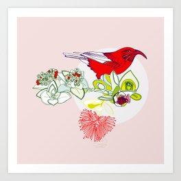 Red Ohia Lehua and Iwi Bird Art Print