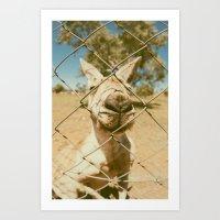 kangaroo Art Prints featuring Kangaroo by Ellenor Argyropoulos