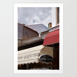 Seagull arrived in the town to say summer is coming Art Print