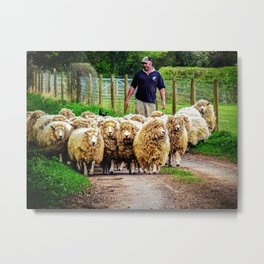 Flock On The Move. Metal Print
