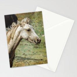 Nimbus, No. 2 Stationery Cards