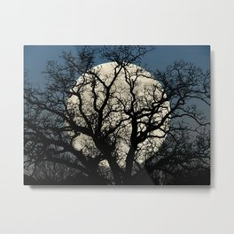 Tree Full Moon Midnight Blue Sky Cottage Decor Art A474 Metal Print