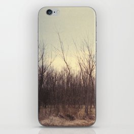 into the wild iPhone Skin