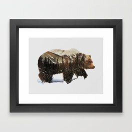 Arctic Grizzly Bear Framed Art Print