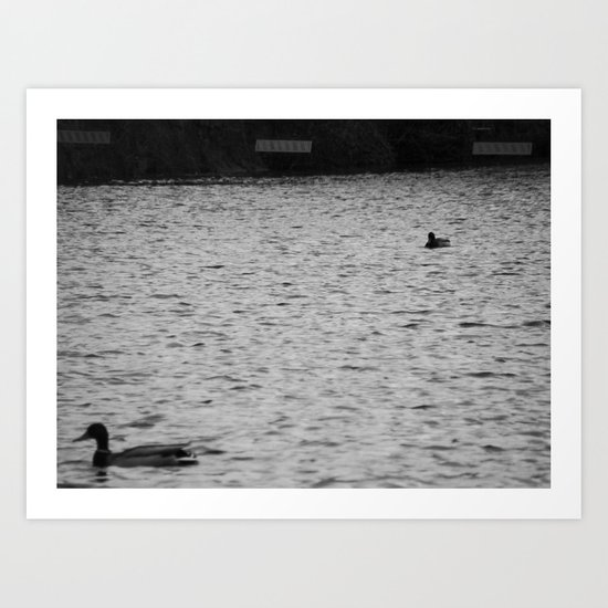 Searching for a Friend. Art Print