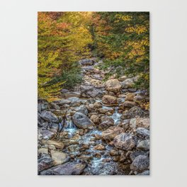 Streaming Autumn Canvas Print
