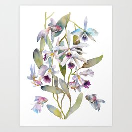 Cattleya Orchid White and Purple with Goldfish Muted Pallet Botanical Design Art Print