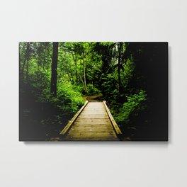 Bridge 01 Metal Print