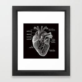 Solar Vascular System Framed Art Print